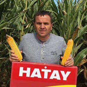 hatay22